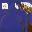 Izka in blue, serigraphy, 100x70 cm, 2003