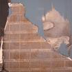 Izka in sky blue, serigraphy, 100x70 cm, 2004